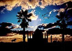 Moschee, Exotisch, Architektur