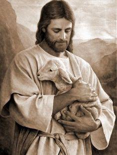 Representative of the Lord Jesus Christ Jesus Christ Lds, Jesus Our Savior, Pictures Of Jesus Christ, Jesus Art, Jesus Is Lord, Christian Paintings, Christian Art, Jesus Painting, Bible Art