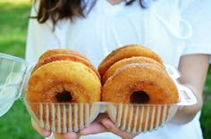 The legendary Sky Top Orchard Apple Cider Donuts- just a short drive from Greenville, SC!
