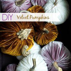 DIY Velvet Pumpkins - Up to Date Interiors