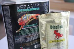 My Favorite Reptile Products & Tips Veiled Chameleon, Chameleons, Biologist, Reptiles, Panther, Turtle, Insects, Pets