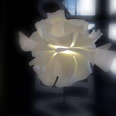 -Pascale Girardin-  'Corian Flowers'