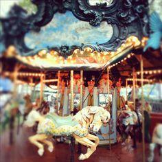 Carousel photo Fair photo carnival photo horse photo by pixamatic, $25.00