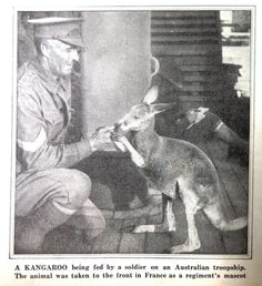 WWI image, Visual Studies Collection, Library of Virginia. Wwi, Virginia, Memories, Pets, Animals, Fictional Characters, Image, Collection, Memoirs