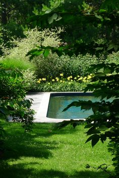 Perfect pool and garden