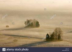 Germany, Bavaria, Murnau, Misty landscape Stock Foto