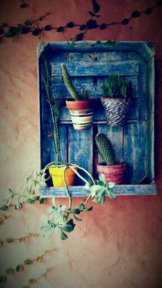 Repisa que huce con un cajon de verduras y mis cactus