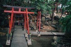 photos du Japon, images du Japon, blog Japon, photographe à Tokyo, guide francophone à Tokyo, Tokyo photo tours, Tokyo photo walk