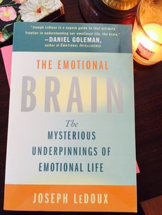 If there were a bible on the subject, this would be it.  http://www.amazon.com/Emotional-Brain-Mysterious-Underpinnings-Life/dp/0684836599/yogalila-20