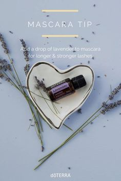 Learn all about lavender essential oil? Included is all there is to know about doTERRA lavender essential oil uses including DIY, food & diffuser recipes Lavender Oil Uses, Lavender Essential Oil Uses, Lavender Oil Benefits, Best Essential Oils, Essential Oil Blends, Lavender Doterra, Diy Cosmetic, Diffuser Recipes, Doterra Essential Oils
