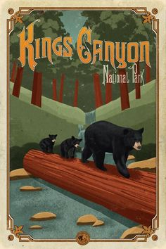 Lee saved to badezimmer,Kings Canyon National Park Poster - National Park Posters, Us National Parks, Camping 3, Cozy Library, Retro Poster, Poster Vintage, Vintage Signs, Sequoia National Park, Park Art