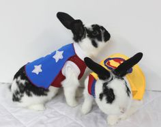 Halloween Superman outfit with cape for your bunny. by turvytopsy