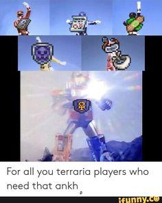 20 Best terraria memes images in 2018 | Terraria memes