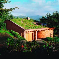Living roof in Cannon Beach