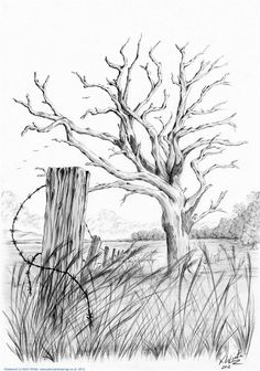 drawings - `The Last Post` by Keith Winter Tree Drawings Pencil, Pencil Art Drawings, Art Drawings Sketches, Hipster Drawings, Drawing Faces, Manga Drawing, Pencil Sketches Landscape, Landscape Drawings, Simple Landscape Drawing