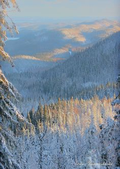 New Sweden Nature Winter National Parks 57 Ideas Nature Photography Flowers, Romantic Nature, Finland Travel, House In Nature, America And Canada, Mountain Landscape, Winter Scenes, Outdoor Life, Amazing Nature