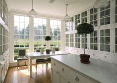 windows and glass fronted cabinets