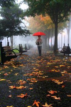 Sonbahar Yağmur ~ Hub Fotoğrafları