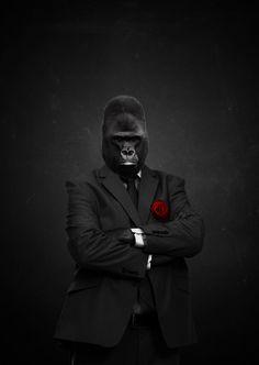 #Monkey: