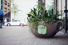 Flower pots in cities are turned into tea cups. Each pot contains a tea bag flavor that matches the type of flower in the pot. Just like the flowers in the pots are all-natural, so too is Bigelow& All-Natural Organic Tea. Street Marketing, Guerilla Marketing, Design Salon, Hotel Restaurant, Creative Advertising, Guerrilla Advertising, Street Furniture, Cafe Design, Agriculture