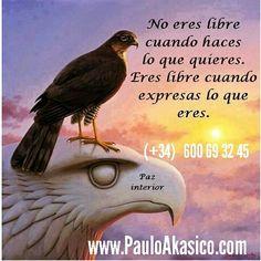 La #libertad rsta #dentro de ti #conecta con tu #esencia abre tu #alma la #verdad te #hace #libre #sal de la #matrix #registros #akasicos www.PauloAkasico.com/registros-akasicos2 #PauloAkasico #akasico #akasicos @akasico1