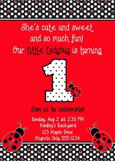 Birthday Invitation, Lady Bug Theme