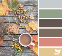 Ideas For Wall Color Palette Design Seeds Fall Color Palette, Colour Pallette, Colour Schemes, Color Combos, Color Patterns, Design Seeds, Palette Design, Colour Board, World Of Color