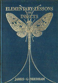 ≈ Beautiful Antique Books ≈ Elementary Lessons on Insects by James Needham, 1928