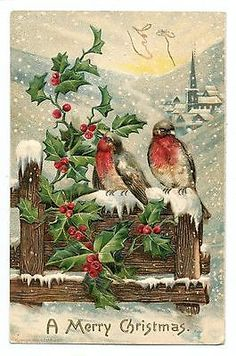 Love Birds^Holly^Fence^1907 Vintage Christmas Art Postcard Embossed