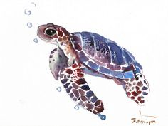 Sea Turtle, Original watercolor painting, 9 X 12 in, sea animal art seaworld animals, blue purple sea animals