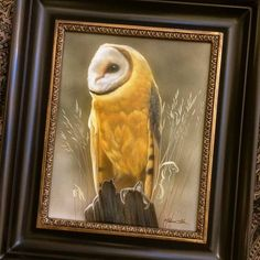 "New Barn Owl that just arrived at Seaside Art Gallery in NC 10"" x 8"" watercolor on board with sterling silver Rebecca Latham  #wildlife #watercolor #art #animals #painting #miniature #artist #miniatureart #realism #animallovers #owl #barnowl  #birdsofprey #raptor #birds #falconry #naturalism #OBX #nc #northcarolina #silver"
