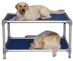 need this for my pups!! would save space in our little house!