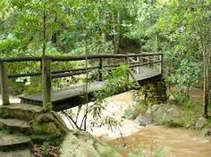 There are numerous bridges along the trails as they meander through the nature reserve. Nature Reserve, Garden Bridge, Bridges, Trail, Waterfall, The Incredibles, Outdoor Structures, Pictures, Beautiful