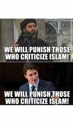 Wants you to be pals with your local terrorist Words For Stupid, Windsor Ontario, Short Words, Justin Trudeau, Truth Hurts, Banff, Funny Signs, Scary, Humor