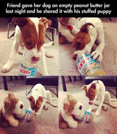 Dog shares his peanut butter