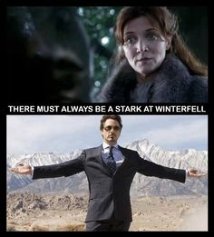Game of Thrones Iron Man  Funny Quote