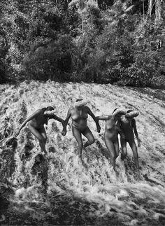 """Between seeing like a man and seeing like an animal: Sebastião Salgado's """"Genesis"""""""