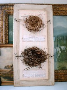Birds nest - interesting presentation using wire to support the delicate twigs from the mixed media masters BIRDIES