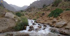 چشمه میشی که مردم بومی به آن #چشمه_بشو می گویند، در 5 کیلومتری شمال شرقی #سی_سخت می باشد. #چشمه_میشی از ارتفاعات دنا سرچشمه و در مسیر عبور بهمن های زمستانی به مسیر خود ادامه می دهد. این چشمه یکی از پرآب ترین چشمه های استان کهگیلویه و بویراحمد است که آب آن فوق العاده سرد است.