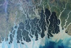 Yann Arthus-Bertrand's book, Earth from Space, contains 150 images of our home planet's terrains, as seen from space. Deep Ecology, Arthus Bertrand, Bay Of Bengal, Bengal Tiger, West Bengal, Mangrove Forest, Earth From Space, Bird Species, Animal Species