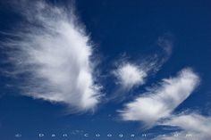 Castaway Cloud Angel Wings | not my pic, but I love the idea of using clouds shaped as angel wings
