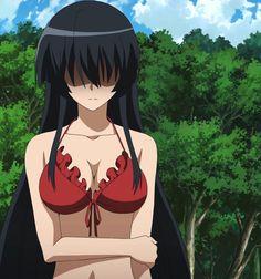Me Anime, Anime Demon, Akame Ga Kill Sheele, Chelsea Akame Ga Kill, Manga Combat, Itachi, Wolf Spirit Animal, Cute Anime Coupes, Cute Anime Character