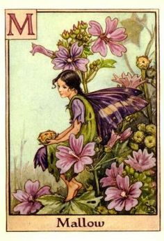 Alphabet Fairies:  Mallow by Cicely Mary Barker
