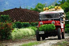 The #colombian #coffee #Zone, Caribbean and the Andes Mountains all in a 12 days tour. Curious Click the pin for more.