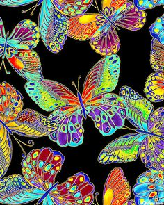 eQuilter Glimmer - Butterfly Rainbow - Black/Gold