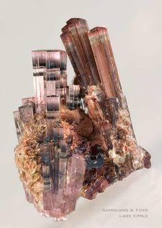bijoux-et-mineraux:  Elbaite Tourmaline - Germany / Mineral Friends <3
