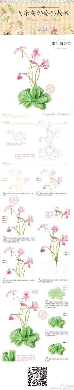 Duitang.com - 彩铅