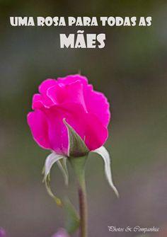 todos os dias é dia de quem tanto nos ama: FELIZ DIA DAS MÃES! #diadasmães