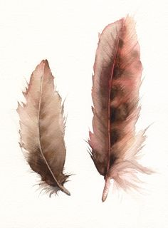 Feathers No. 2   feather painting, nature, archival print.  via Etsy.
