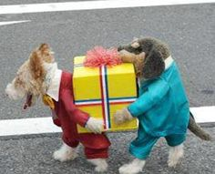 Awesome Halloween Costume!!!